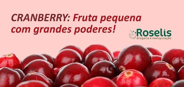 Cranberry: Fruta pequena com grandes poderes!